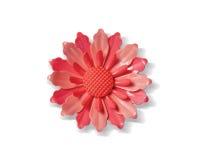 Pin del fiore Fotografie Stock Libere da Diritti