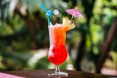 Pin Orange cocktail Stock Images
