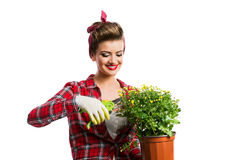 Pin-up girl holding flower pot with yellow daisies and shears Royalty Free Stock Photos
