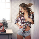 Pin-up girl on a hot summer day. Pin-up girl. Hot summer day Royalty Free Stock Photo