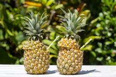 Pina在新鲜的两个菠萝的colada鸡尾酒在热带庭院里 海岛巴厘岛,印度尼西亚 免版税库存图片