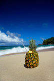 Pina apple with pipe on beach of Atlantic ocean Stock Images