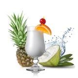 Pina colada鸡尾酒用椰子和菠萝 库存图片