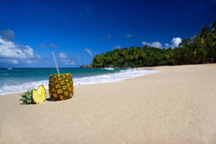 Pina colada on beach of Atlantic ocean Stock Image