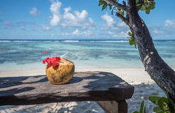 Pina colada in coconut on the tropical beach, Seychelles Stock Photos