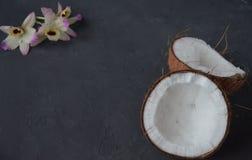 Pina-colada Getränk im Cocktailglas, das mit Kokosnuss und Orchidee verziert wird, blüht Lizenzfreies Stockfoto