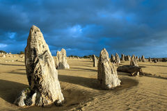 Pinacles, Australie occidentale Photos libres de droits