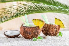 Pinacolada in coconut with mint leaves Stock Images