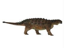 Pinacosaurus Dinosaur Side Profile Royalty Free Stock Photo
