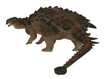 Pinacosaurus Dinosaur Tail. Pinacosaurus was a herbivorous ankylosaur that lived in the Cretaceous Period of Mongolia and China Stock Image