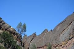 Pinakla parka narodowego maczety grań z drzewami Zdjęcia Royalty Free