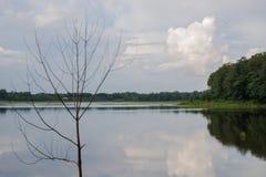 Pinamaloy sjö royaltyfria foton