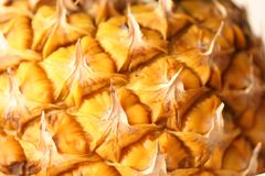 Pinapple. Closeup background from a peel of pineapple Stock Photos