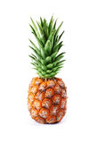 Pinapple Royalty Free Stock Images