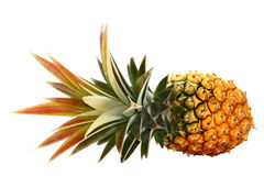 Pinapple Stock Images