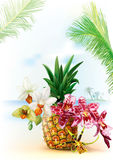 Pinapple with orchid flowers Royalty Free Stock Photo