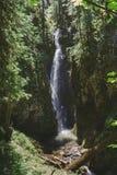 Pinard Falls Umpqua National Forest
