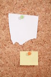 Pinboard. A pinboard with thumtacks on it Royalty Free Stock Photo