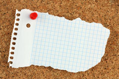 Pinboard. An empty note on a pinboard Royalty Free Stock Image