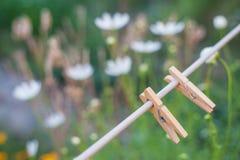 Pince à linge dans le jardin Photo stock