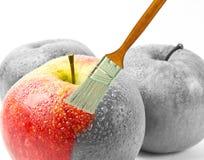 Pincel que pinta uma maçã molhada vermelha fresca que seja em parte preto e branco e colorida em parte Fotos de Stock Royalty Free
