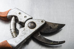 Pincers pliers as a bird Royalty Free Stock Images