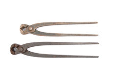 Pincers on white Royalty Free Stock Photos
