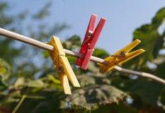 Pinces à linge colorées sur une corde à linge dans le jardin Photographie stock
