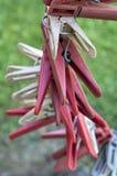 Pinces à linge, pinces à linge, pinces à linge Photographie stock