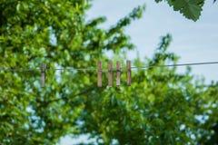 Pinces à linge sur des arbres d'un ciel de corde Image libre de droits