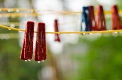 Pinces à linge sur la corde à linge Photo stock