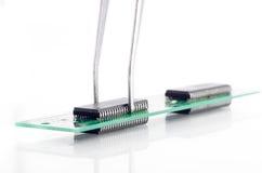 Pincett som rymmer den lilla delen för strömkretsbräde Royaltyfria Foton