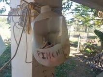 Pinche ou pregador de roupa no jarro do galão do leite em Porto Rico fotografia de stock royalty free
