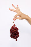 Pinching Grapes Stock Photos