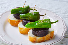Pinchos Burgos morcilla with padron pepper Royalty Free Stock Photo