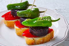 Pinchos Burgos morcilla with padron pepper Royalty Free Stock Photography