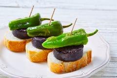 Pinchos Burgos morcilla with padron pepper Royalty Free Stock Photos