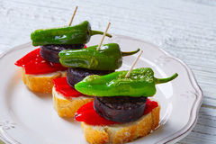 Pinchos Burgos morcilla with padron pepper Stock Photography