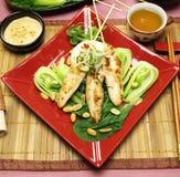 Pinchos chinos del pollo fotos de archivo