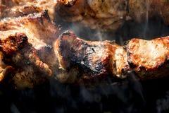 Pinchos de la barbacoa con la carne Imagen de archivo libre de regalías