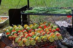Pinchos vegetales en parrilla al aire libre Foto de archivo libre de regalías