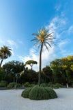 Pincio-Park in Rom Italia Stockbild