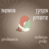 Pindasana 胚胎姿势 图库摄影