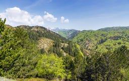 Ландшафт в горах Pindus (1600m), Epirus, Греция Стоковое Изображение RF