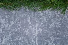 Pine& x27; ветвь s на серой предпосылке Стоковая Фотография RF