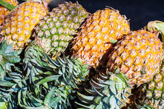 Pine-apple Stock Images