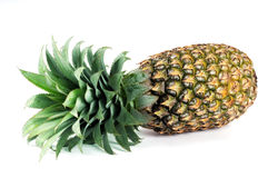 Free Pine Apple Royalty Free Stock Photography - 8664967