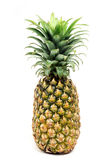 Pine apple. On isolated background Stock Photos