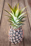Pine apple Stock Images