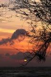 Pine on background of sunset sea songkhla. Sunrise Beach sea Good morning royalty free stock image